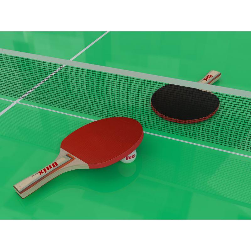 Фотография Всепогодный теннисный стол UNIX line outdoor 6mm (green) 4
