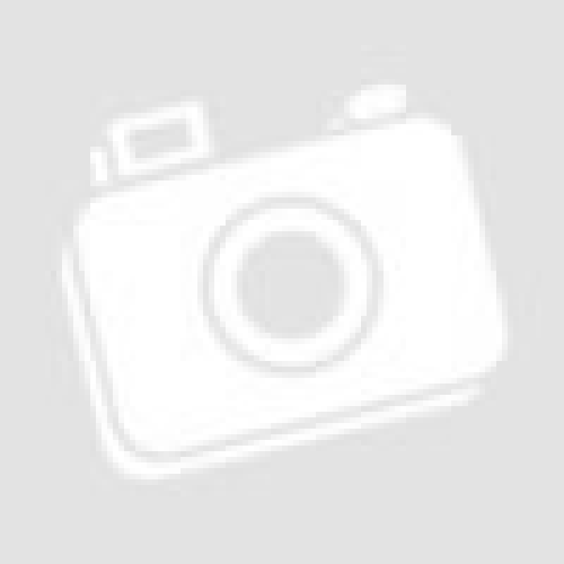 Фотография Шведская стенка металлическая усиленная ПРОФ ТФ-БП-ДГУ-СПШ 5